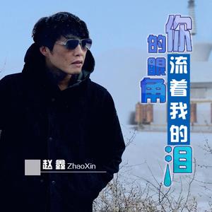 在线听你的眼角流着我的泪(原唱是赵鑫),城市猎人演唱点播:89次