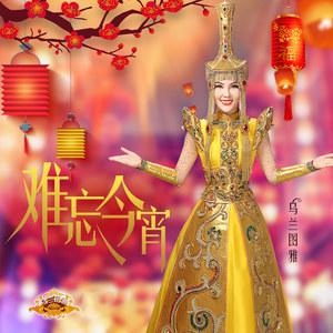 难忘今宵(热度:173)由张森翻唱,原唱歌手乌兰图雅