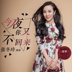 今夜你又不回来(3D版)(热度:93)由彩云翻唱,原唱歌手张冬玲