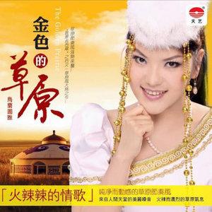草原情哥哥(热度:38)由《纳兰战胜花翻唱,原唱歌手乌兰图雅