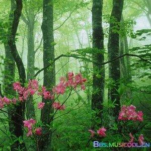 老地方的雨原唱是雷婷,由一路有你(友访必回)翻唱(播放:186)