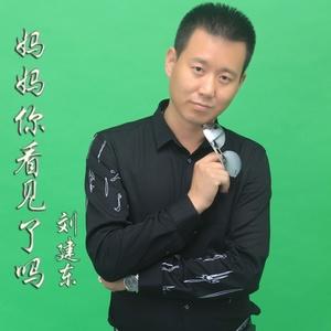 妈妈你看见了吗在线听(原唱是刘建东),平凡的人演唱点播:253次