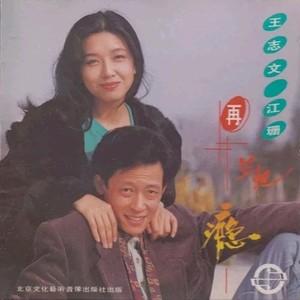 糊涂的爱(热度:89)由花开富贵翻唱,原唱歌手王志文/江珊