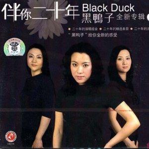 好人好梦(热度:24)由幽谷寒冰翻唱,原唱歌手黑鸭子组合