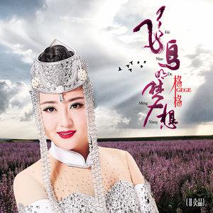 飞鸟的梦想(热度:15)由《纳兰战胜花翻唱,原唱歌手格格