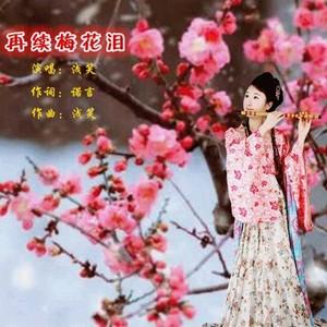 再续梅花泪(热度:115)由空谷幽兰翻唱,原唱歌手浅笑