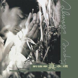 今天(热度:71)由每一天,为佲天翻唱,原唱歌手刘德华