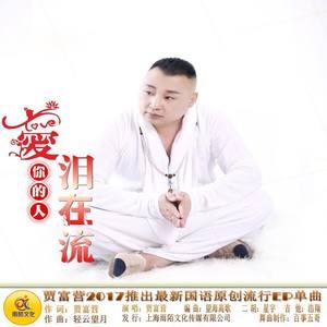爱你的人泪在流(热度:35)由天上的云翻唱,原唱歌手贾富营
