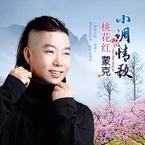 小调情歌桃花红由孙巧莲演唱(原唱:蒙克)