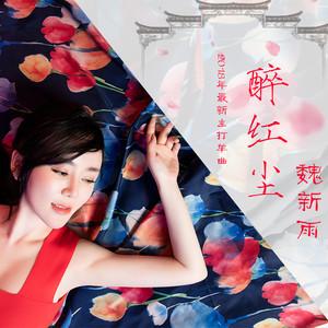 醉红尘(热度:17)由彎彎的月亮翻唱,原唱歌手魏新雨