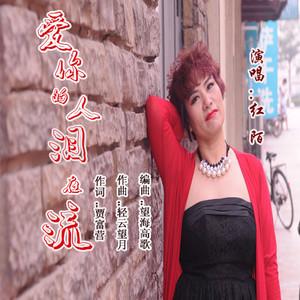 爱你的人泪在流(热度:74)由夏天翻唱,原唱歌手红陌
