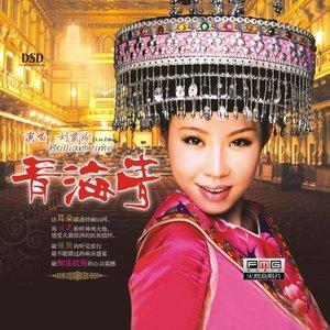 军中绿花(热度:67)由看风景的人翻唱,原唱歌手刘紫玲