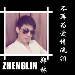 不再为爱情流泪(热度:48)由太阳翻唱,原唱歌手郑林