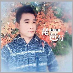 琵琶行(热度:37)由《纳兰战胜花翻唱,原唱歌手刘长凯