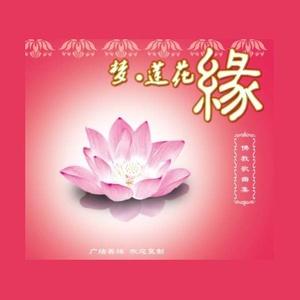梦 莲花缘由叶子演唱(原唱:何禹萱)