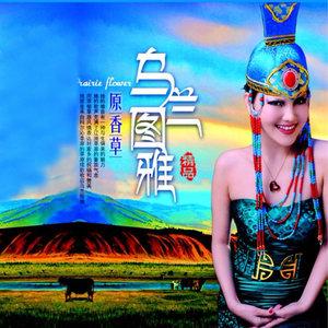 草原一枝花(热度:20)由《纳兰战胜花翻唱,原唱歌手乌兰图雅