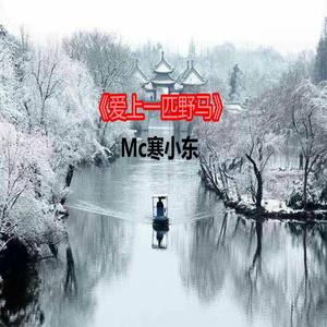 mc李哈哈-爱上一匹野马 千万正版音乐海量无损曲库新歌热歌天天畅听的高品质音