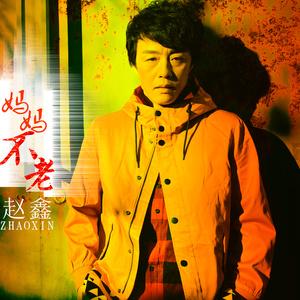 妈妈不老在线听(原唱是赵鑫),哥唱的是寂寞演唱点播:34次