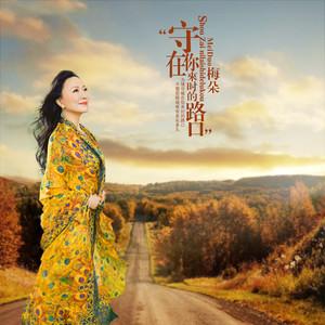 守在你来时的路口(热度:24)由微笑云南11选5倍投会不会中,原唱歌手梅朵