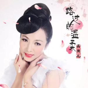 路过的温柔(热度:29)由迎晨彩虹翻唱,原唱歌手赵玉东