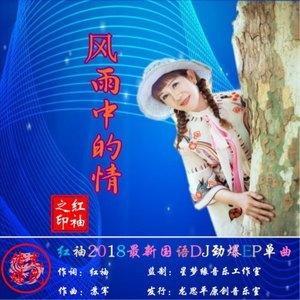 风雨中的情(热度:55)由田维波翻唱,原唱歌手红袖