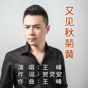 又见秋菊黄(热度:125)由李辉翻唱,原唱歌手王峰