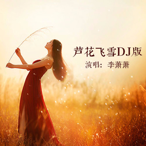 芦花飞雪(DJ版)由一帆风顺演唱(ag9.ag:李萧萧)