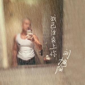 我已经爱上你(正式版)(热度:131)由。翻唱,原唱歌手刘旭阳