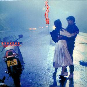 天若有情(Live)(热度:49)由做自己的女王翻唱,原唱歌手袁凤瑛