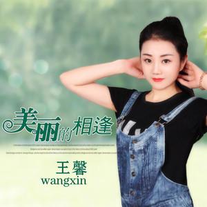 美丽的相逢原唱是王馨,由栀子花翻唱(播放:207)