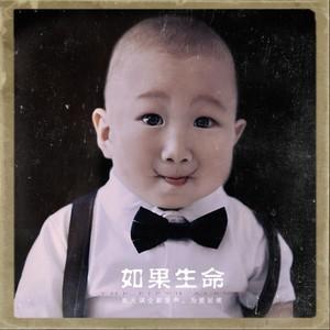 南锣巷驴肉火烧(热度:45)由饶苏平平翻唱,原唱歌手崔天琪QiQi