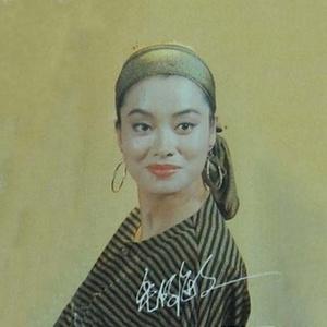 烛光里的妈妈(热度:110)由健康平安翻唱,原唱歌手毛阿敏