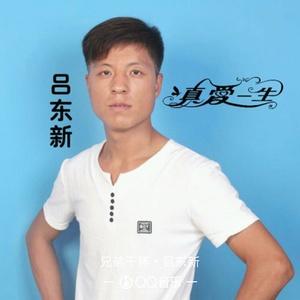 流浪歌(热度:38)由顾运美翻唱,原唱歌手吕东新