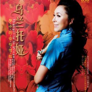 黄玫瑰原唱是乌兰托娅,由春茶比酒香翻唱(播放:50)