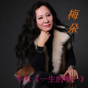 一生的唯一(热度:15)由刘希翠翻唱,原唱歌手梅朵