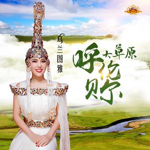 呼伦贝尔大草原(热度:521)由张森翻唱,原唱歌手乌兰图雅