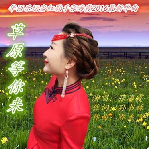 草原等你来(热度:166)由绿叶翻唱,原唱歌手张海霞