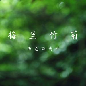 长相忆(热度:119)由②白归翻唱,原唱歌手五色石南叶
