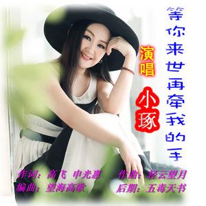 等你来世再牵我的手(热度:54)由桂桂翻唱,原唱歌手小琢