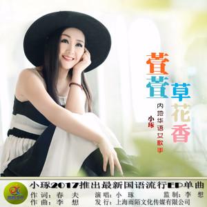 萱萱草花香(热度:21)由爱歌翻唱,原唱歌手小琢