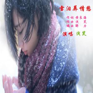 雪泪葬情愁(热度:12)由敏敏翻唱,原唱歌手浅笑