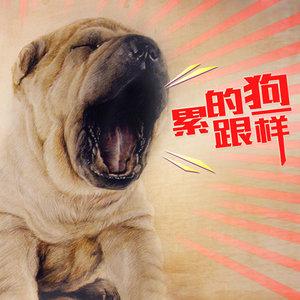 累的跟狗一样由熊熊演唱(原唱:龙奔)