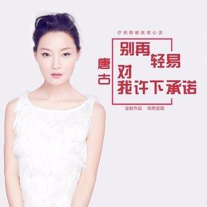 别再轻易对我许下承诺(热度:10)由田萍萍翻唱,原唱歌手唐古