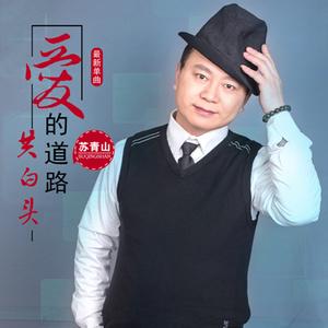 错误的网缘(热度:53)由吉祥如意翻唱,原唱歌手苏青山