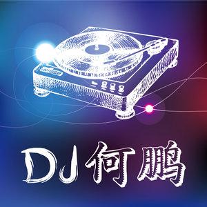 闯码头(DJ版)(热度:42)由飞翔翻唱,原唱歌手DJ何鹏