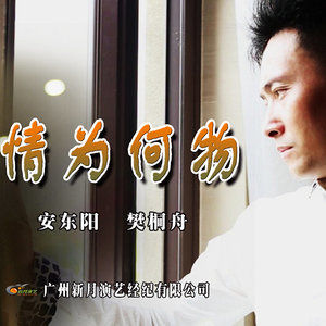 情为何物(热度:18)由我就是我翻唱,原唱歌手安东阳/樊桐舟