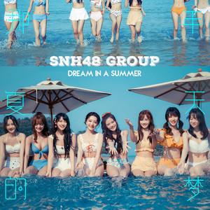 那年夏天的梦-SNH48 GROUP