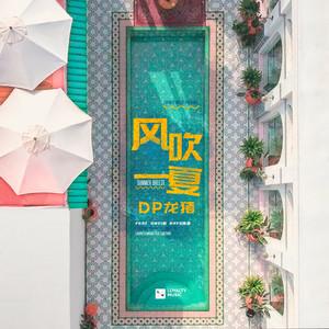 风吹一夏-DP龙猪/Swei水/Rays陈袁