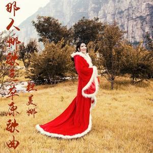 高原红由盛梅演唱(原唱:杜美娜)