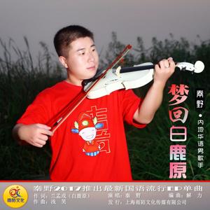 梦回白鹿原由彤艺硕演唱(原唱:秦野)